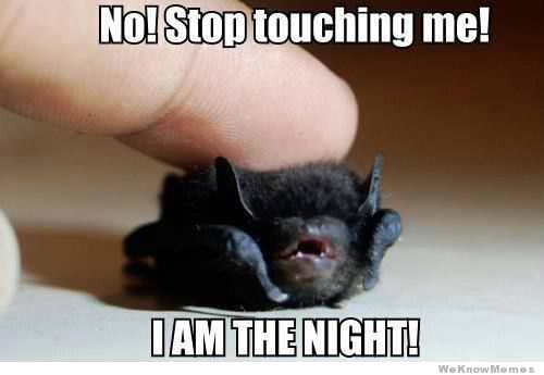 http://weknowmemes.com/2012/11/stop-touching-me-i-am-the-night/
