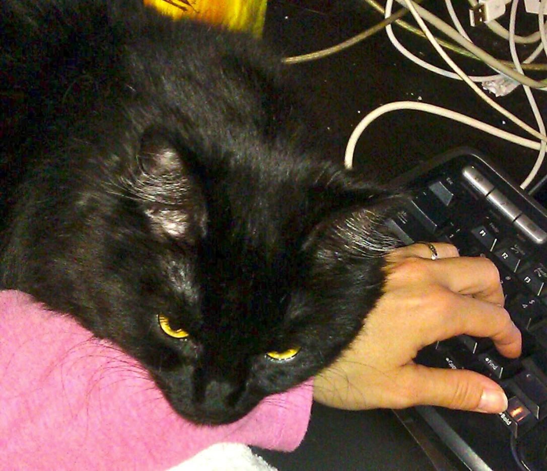 This is how she helped me write.