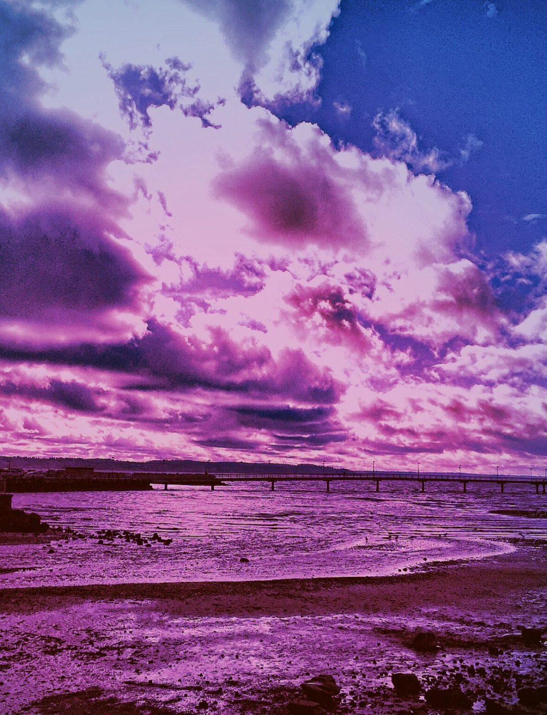 cropped-pinksunset.jpg