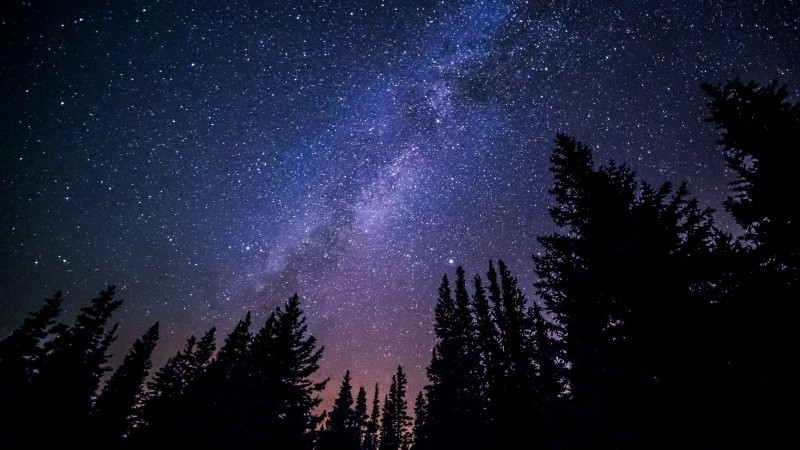 scenic-milky-way-above-forest-in-night-sky